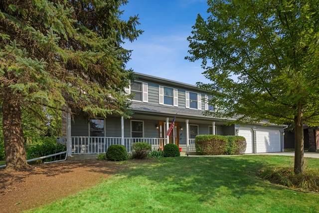 311 Fairway View Drive, Algonquin, IL 60102 (MLS #10814285) :: Ryan Dallas Real Estate