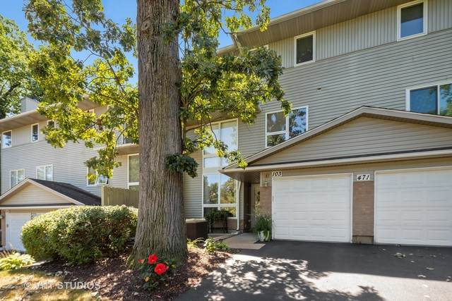 471 River Bend Road #103, Naperville, IL 60540 (MLS #10816518) :: Littlefield Group