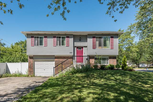 259 N Ashbury Avenue, Bolingbrook, IL 60440 (MLS #10816612) :: The Wexler Group at Keller Williams Preferred Realty