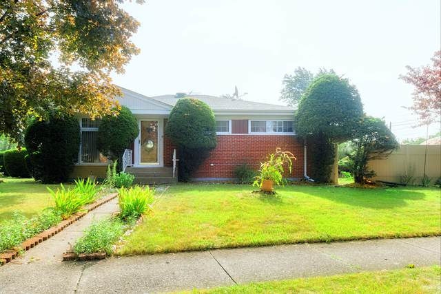 7121 Enfield Avenue, Morton Grove, IL 60053 (MLS #10816950) :: Property Consultants Realty