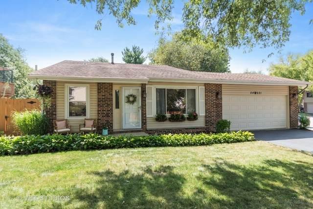 24W621 Meadow Lake Drive, Naperville, IL 60540 (MLS #10818579) :: John Lyons Real Estate