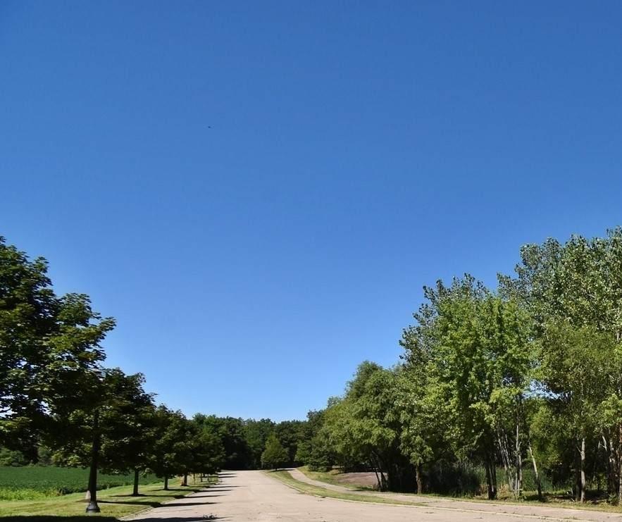 285 Rolling Oaks Drive - Photo 1