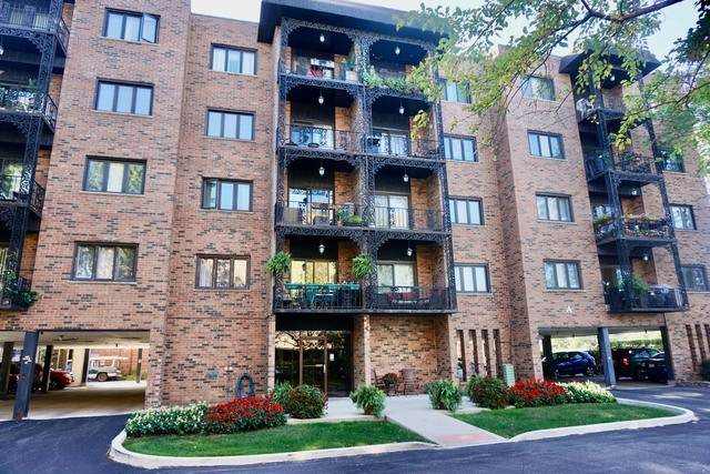 9375 Landings Lane #205, Des Plaines, IL 60016 (MLS #10824037) :: John Lyons Real Estate