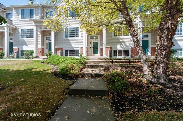 420 Cary Woods Circle, Cary, IL 60013 (MLS #10830639) :: Lewke Partners