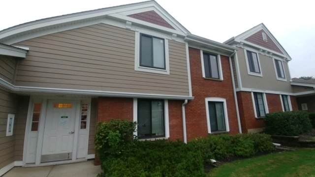 366 Pinetree Lane B1, Schaumburg, IL 60193 (MLS #10845552) :: Littlefield Group