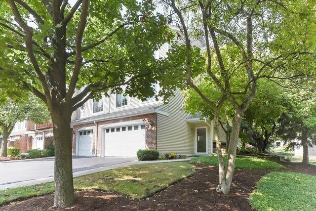 240 E Parallel Street, Palatine, IL 60067 (MLS #10847046) :: John Lyons Real Estate