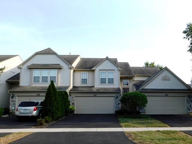 117 W Buckingham Drive, Round Lake, IL 60073 (MLS #10848876) :: John Lyons Real Estate