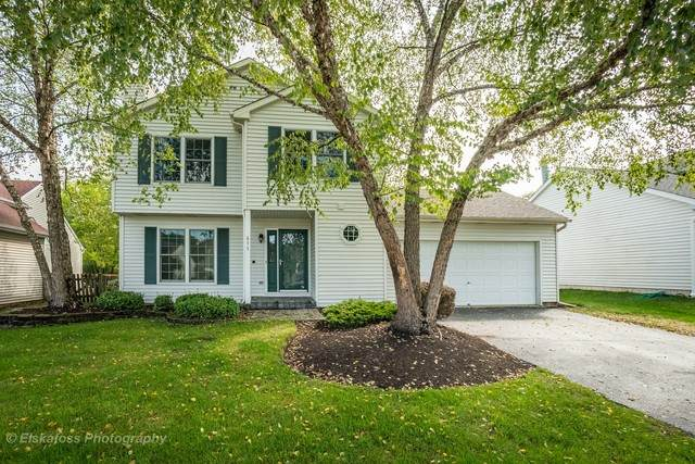 677 Anderson Drive, Lake In The Hills, IL 60156 (MLS #10853467) :: John Lyons Real Estate