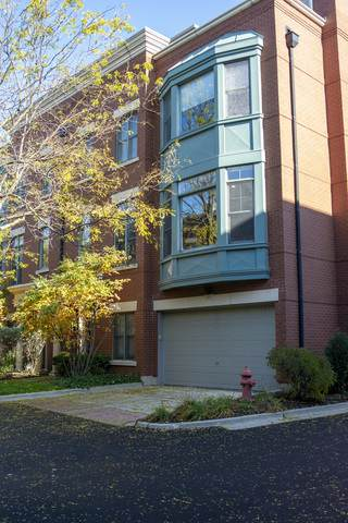 165 Festival Court, Elgin, IL 60120 (MLS #10854898) :: John Lyons Real Estate