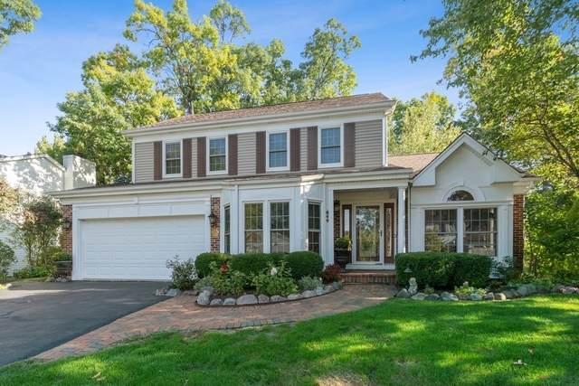 855 Interlaken Drive, Lake Zurich, IL 60047 (MLS #10855124) :: John Lyons Real Estate