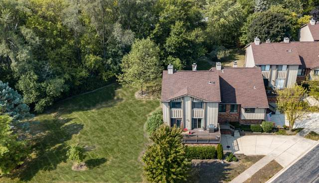 66 Portwine Road, Willowbrook, IL 60527 (MLS #10876638) :: Littlefield Group
