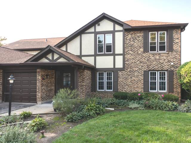 173 Grove Avenue B, Des Plaines, IL 60016 (MLS #10880622) :: Lewke Partners