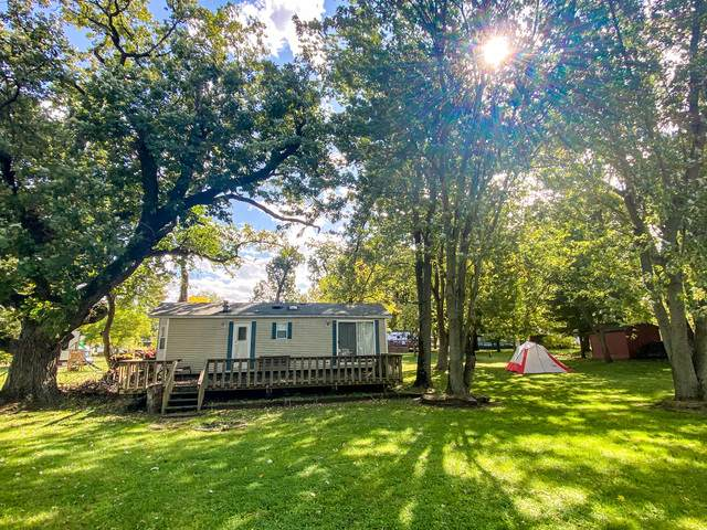 23-98/99 Woodhaven Drive, Sublette, IL 61367 (MLS #10887023) :: Property Consultants Realty