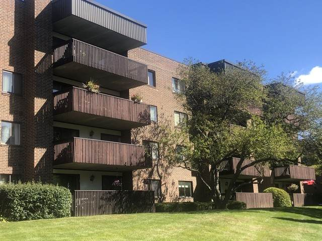 650 Whitney Court #202, Gurnee, IL 60031 (MLS #10890431) :: Property Consultants Realty