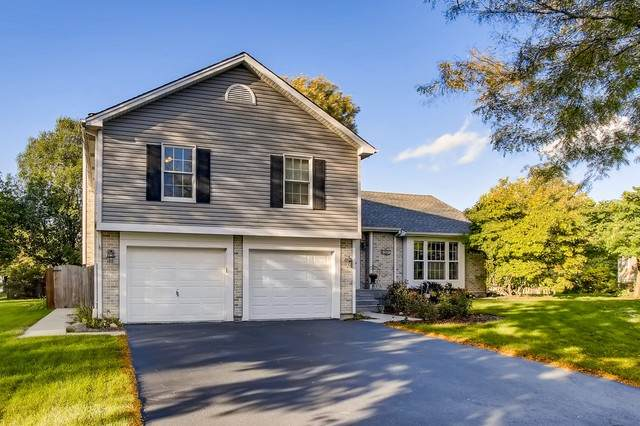 1221 Shoop Circle, Geneva, IL 60134 (MLS #10891289) :: John Lyons Real Estate