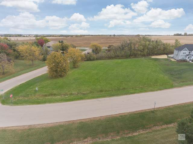 5320 Half Round Road, Oswego, IL 60543 (MLS #10892278) :: The Dena Furlow Team - Keller Williams Realty