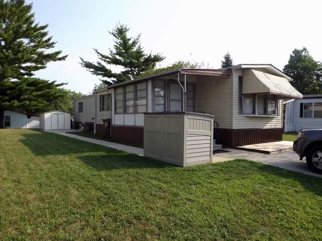 58 Brushwood Drive, Matteson, IL 60443 (MLS #10892978) :: Littlefield Group