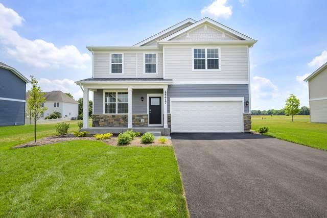16917 S Corinne Circle, Plainfield, IL 60586 (MLS #10903216) :: John Lyons Real Estate