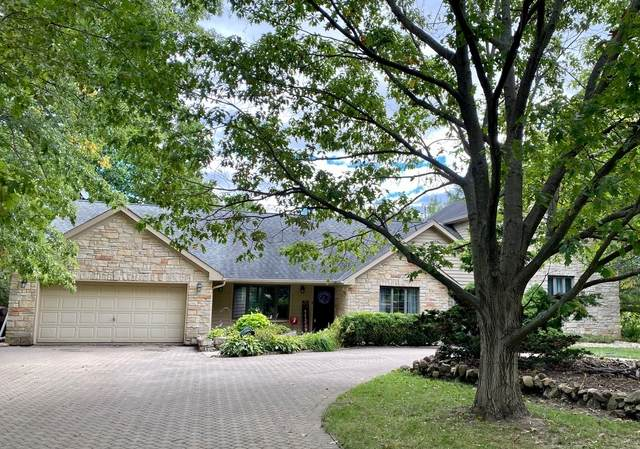 18415 S Parker Road, Mokena, IL 60448 (MLS #10916149) :: Helen Oliveri Real Estate