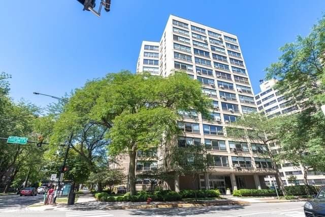 5050 S East End Avenue 1E, Chicago, IL 60615 (MLS #10916875) :: Helen Oliveri Real Estate