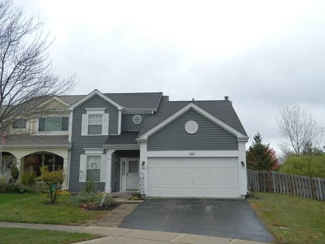 213 Dunton Court, Mundelein, IL 60060 (MLS #10916960) :: Helen Oliveri Real Estate