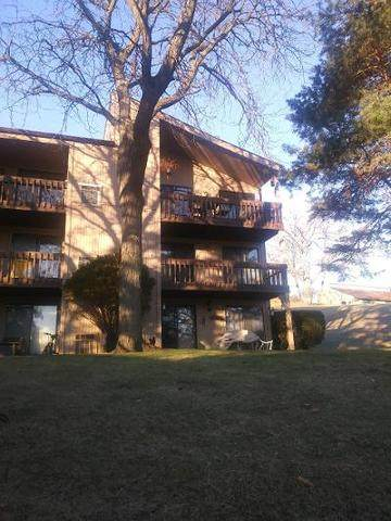 49 Oak Hill Colony #9, Fox Lake, IL 60020 (MLS #10951688) :: The Wexler Group at Keller Williams Preferred Realty