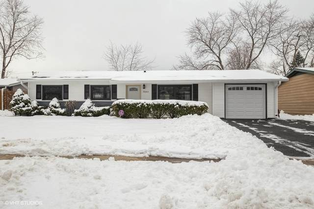 7046 Orchard Lane, Hanover Park, IL 60133 (MLS #10961883) :: Schoon Family Group