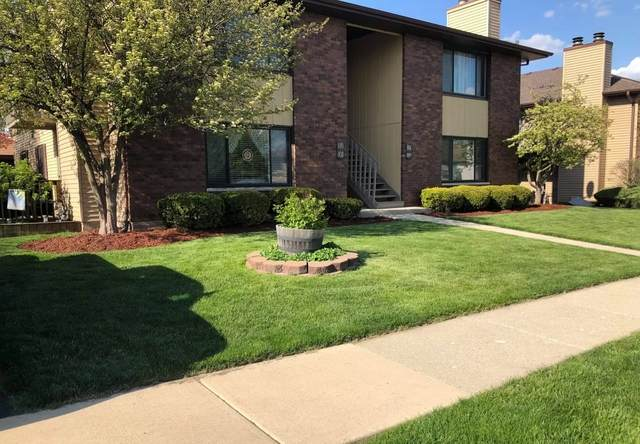 1110 Manchester Court #1110, South Elgin, IL 60177 (MLS #10969834) :: Janet Jurich