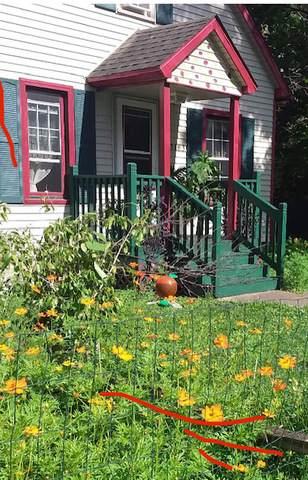 3163 N Oak Street, Momence, IL 60954 (MLS #10980095) :: The Dena Furlow Team - Keller Williams Realty