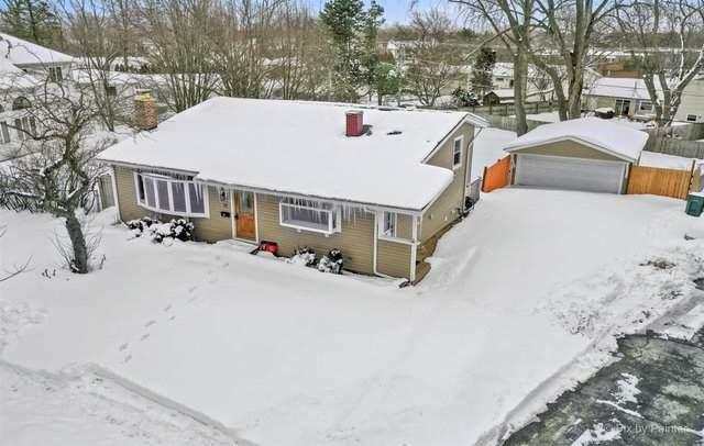 71 Mohawk Trail, Buffalo Grove, IL 60089 (MLS #10988074) :: Janet Jurich
