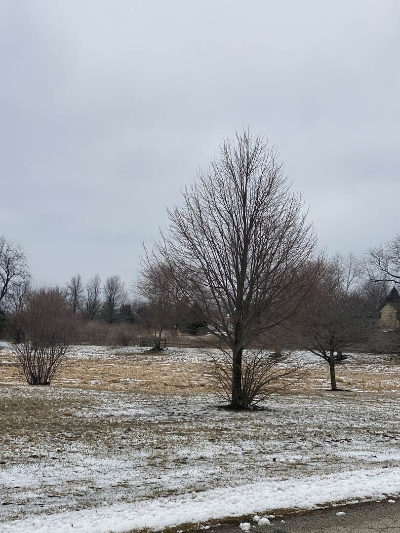 Lot 46 Prairie Valley Drive - Photo 1