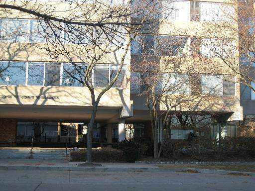 2020 Saint Johns Avenue #308, Highland Park, IL 60035 (MLS #11004641) :: The Dena Furlow Team - Keller Williams Realty