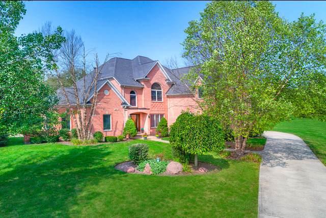 12 Shenandoah Lane, Hawthorn Woods, IL 60047 (MLS #11031148) :: Helen Oliveri Real Estate