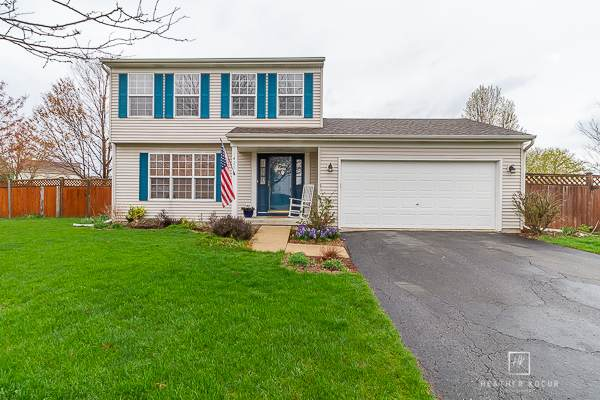 1425 Chestnut Court, Yorkville, IL 60560 (MLS #11046531) :: RE/MAX IMPACT