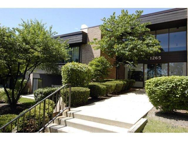1265 N Sterling Avenue #105, Palatine, IL 60067 (MLS #11064115) :: Helen Oliveri Real Estate