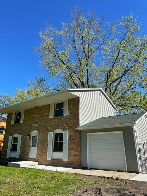 206 Thornhurst Road, Bolingbrook, IL 60440 (MLS #11090916) :: Littlefield Group