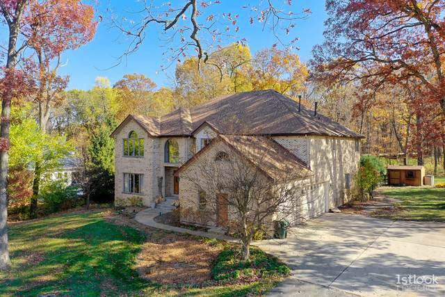 19511 S Hunter Trail, Mokena, IL 60448 (MLS #11098717) :: BN Homes Group