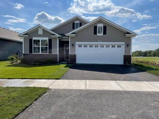 1030 Fitzwilliam Way, North Aurora, IL 60542 (MLS #11103802) :: BN Homes Group