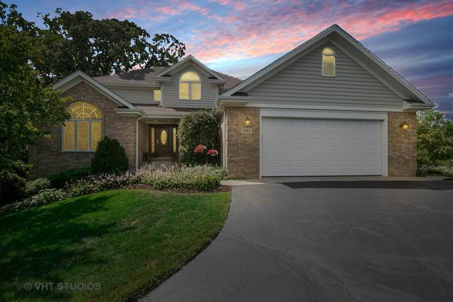 8901 Alamonte Drive, Spring Grove, IL 60081 (MLS #11222493) :: Touchstone Group