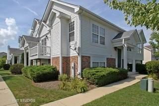 559 Triumph Court, Hainesville, IL 60030 (MLS #11230581) :: Littlefield Group