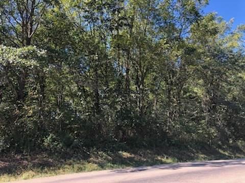 LOT 586 Lake Thunderbird Drive, Putnam, IL 61560 (MLS #11238006) :: The Wexler Group at Keller Williams Preferred Realty