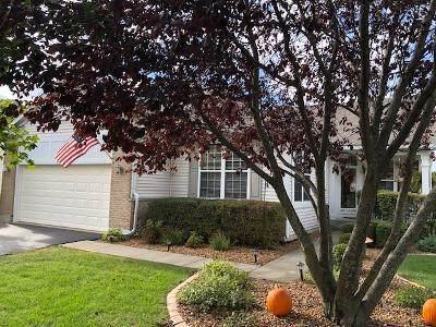 1485 W Grand Haven Road, Romeoville, IL 60446 (MLS #11253107) :: RE/MAX IMPACT