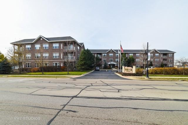10 N Gilbert Street #307, South Elgin, IL 60177 (MLS #09806497) :: The Dena Furlow Team - Keller Williams Realty
