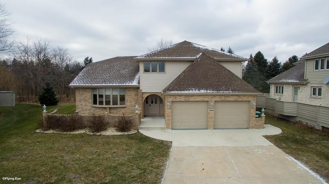14162 W Rado Drive, Homer Glen, IL 60491 (MLS #09811374) :: Baz Realty Network | Keller Williams Preferred Realty