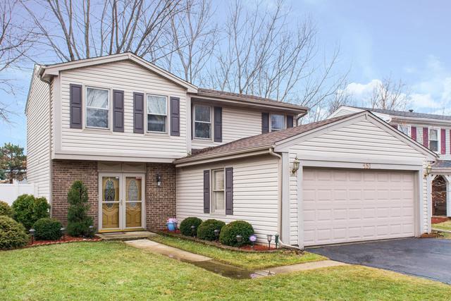 450 Garden Avenue S, Roselle, IL 60172 (MLS #09863715) :: Domain Realty