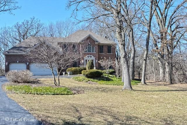 1241 Old Oak Court, Hampshire, IL 60140 (MLS #09867280) :: The Jacobs Group