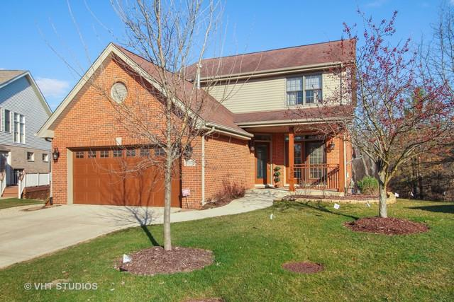 17515 Brook Crossing Drive, Orland Park, IL 60467 (MLS #09921583) :: Lewke Partners