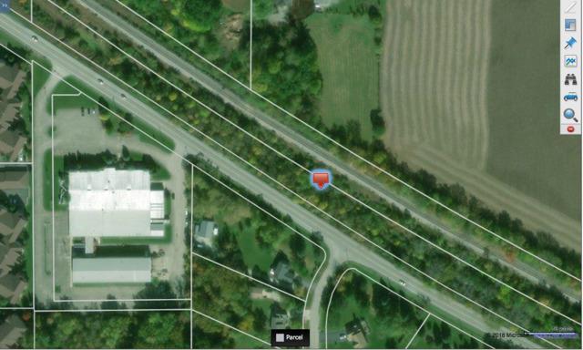 US Route 12, Richmond, IL 60071 (MLS #09957298) :: The Dena Furlow Team - Keller Williams Realty