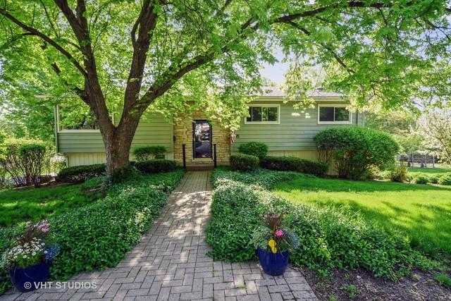 115 Kainer Avenue, Barrington, IL 60010 (MLS #09958067) :: The Jacobs Group