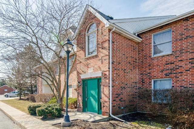 1341 Cunat Court 1B, Lake In The Hills, IL 60156 (MLS #09968167) :: Domain Realty